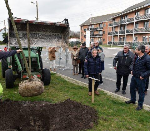 Plantation des arbres offerts à la Ville par le Lions Club