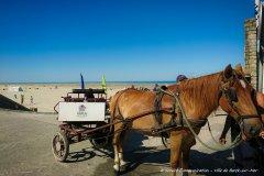 Ballade à chaval sur l'esplanade de Berck-sur-Mer