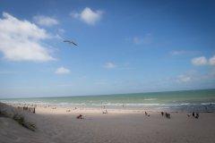 Plage vue des dunes à Berck-sur-Mer