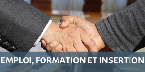 Emploi formation insertion